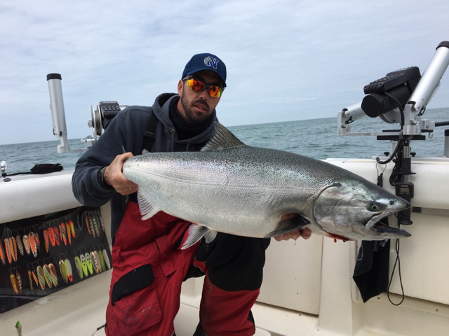 Walleye walleye page 2017 page 27 lake erie fishing for Lake erie fishing report 2017